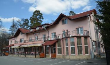 Villa Dumbrava Sibiu